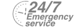 24/7 Emergency Service Pest Control in Deptford, SE8. Call Now! 020 8166 9746
