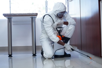Emergency Pest Control, Pest Control in Deptford, SE8. Call Now 020 8166 9746